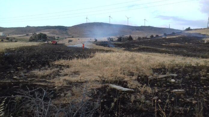 Ν.Εύβοια:Φωτιά στη θέση Χωνί στα Σφαγεία Καρύστου [εικόνες]