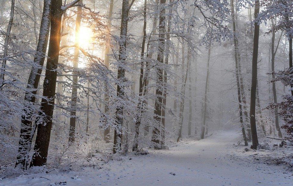 Εύβοια Σχέδιο «Βορέας» : Τι πρέπει να κάνουν Περιφέρειες και Δήμοι στην περίπτωση χιονοπτώσεων και παγετού