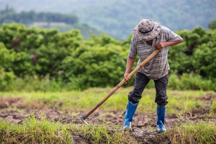 Επιστρεπτέα προκαταβολή 1.000 ευρώ για τους αγρότες- Ημερομηνία και δικαιούχοι